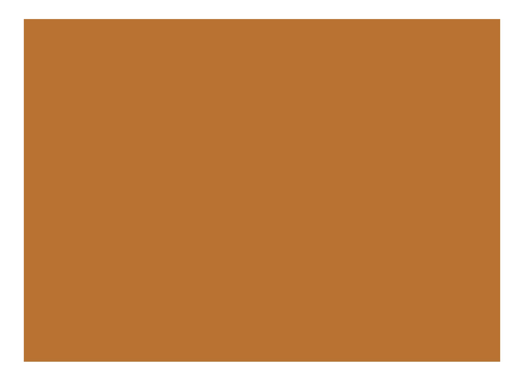 Birds & Monkeys GmbH (Logo)